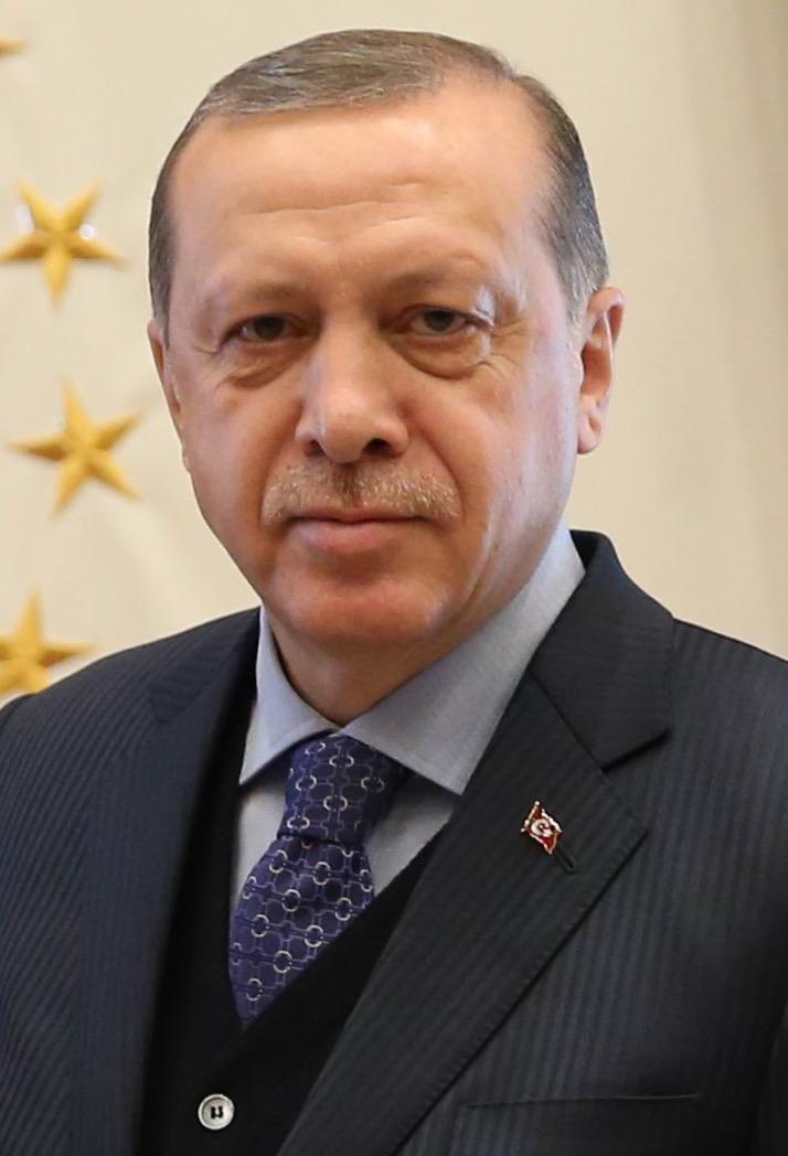 Recep Tayyip Erdogan, Turkey's President in 2017