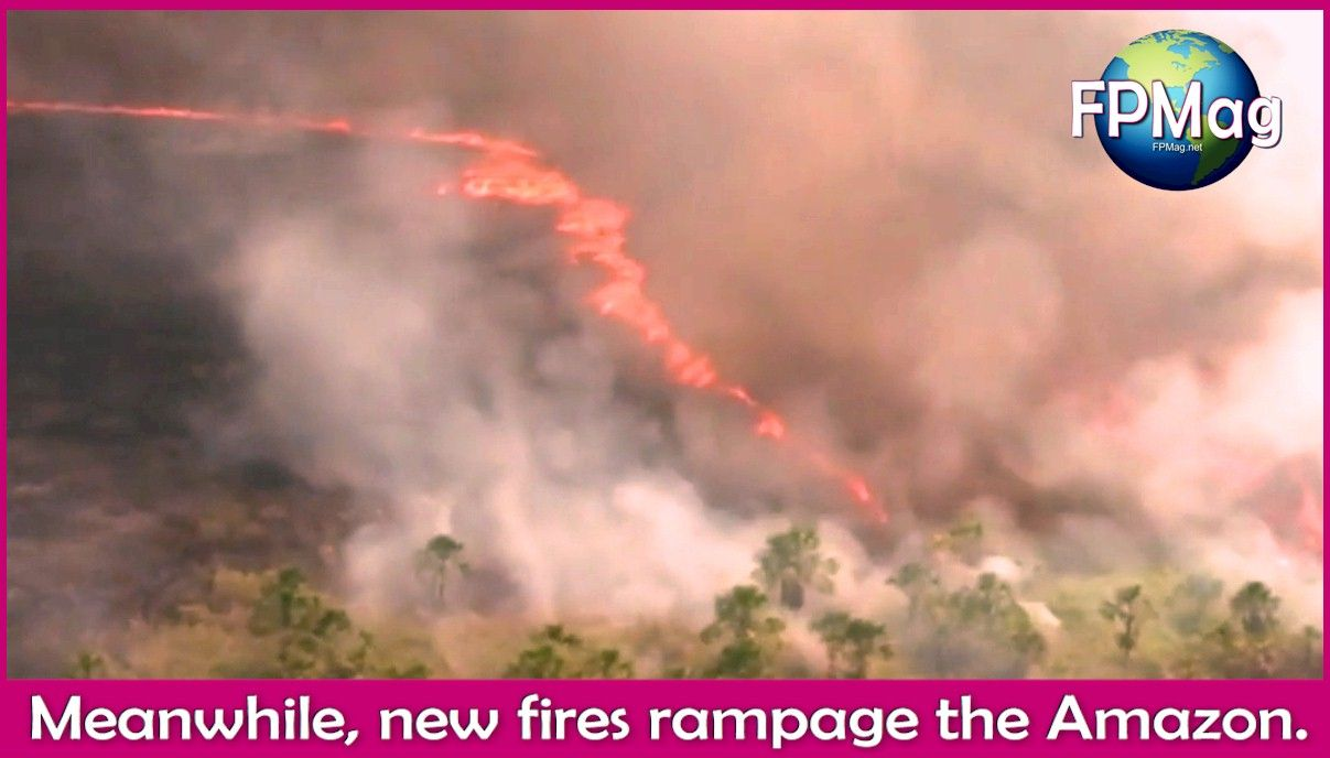 New fires are burning in the Amazon and nobody has stepped up to actually do something.