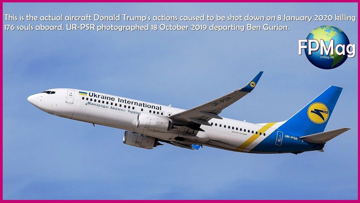 This is the actual aircraft Donald Trump's actions caused to be shot down