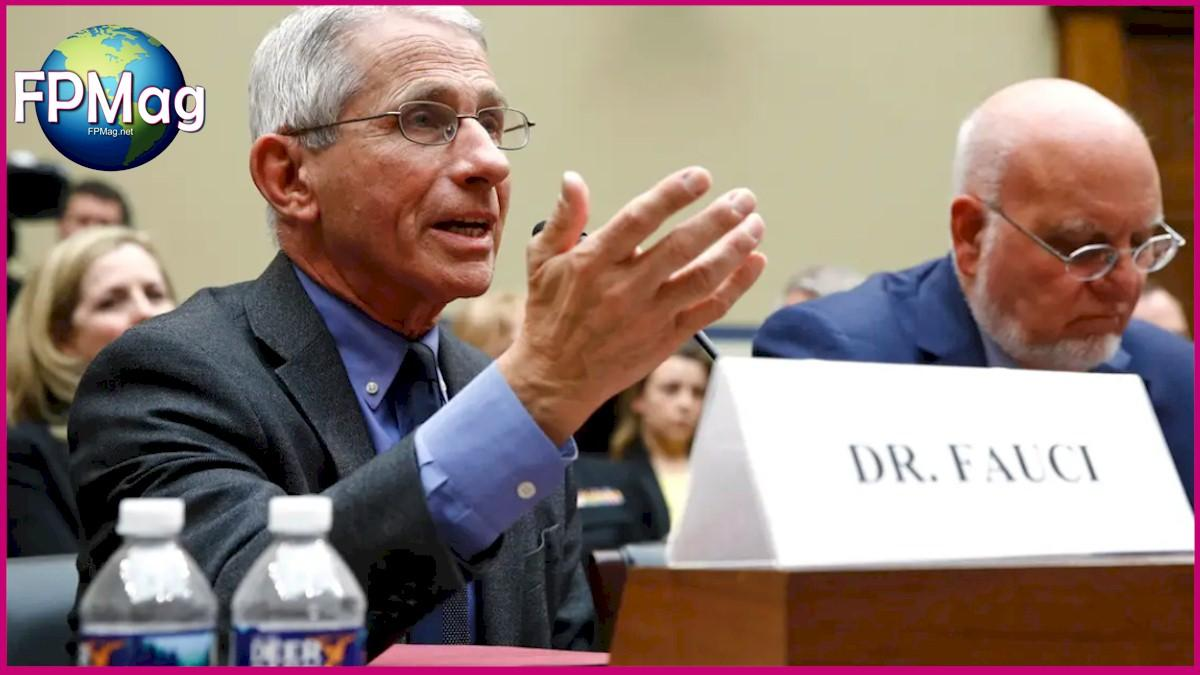 Dr. Anthony Fauci, director of the National Institute of Allergy and Infectious Diseases, testifies before a House Oversight Committee hearing